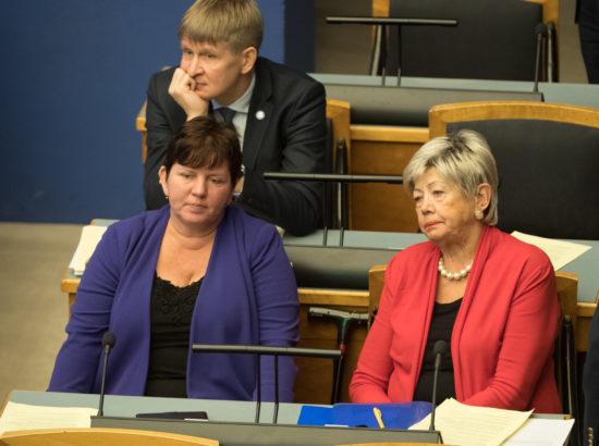 Täiskogu istung, 20. veebruar 2019