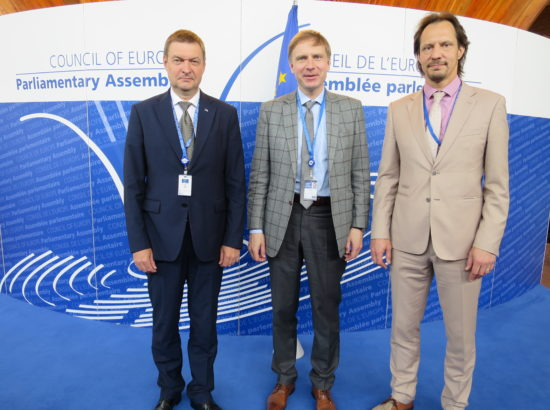 Euroopa Nõukogu Parlamentaarse Assamblee delegatsioon (ENPA)