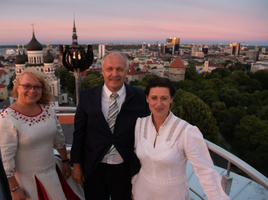 XXVII laulu- ja XX tantsupeo tuli jõudis Toompeale Kuberneri aeda ning viidi Pika Hermanni torni ööbima