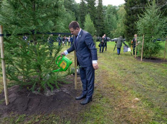 Riigikogu esimees Jüri Ratas osales iseseisvuse taastamise aastapäeva tähistamiseks puude istutamisel Kadriorus